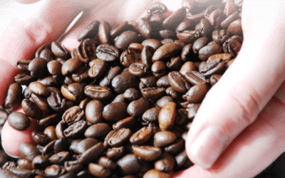 Useful tips for choosing the best coffee for you